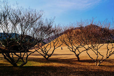 Photograph - Royal Tombs In Winter by Roy Cruz