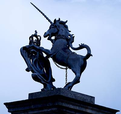 Photograph - Royal Unicorn by Eric Tressler