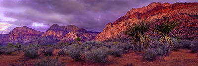 Red Rock Canyon Art Print by Mikes Nature