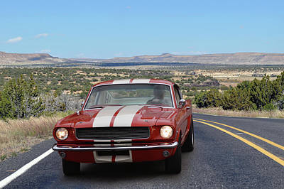 Photograph - Rt 66 Mustang by Bill Dutting