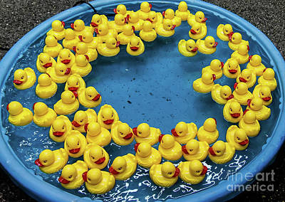 Photograph - Rubber Duckies by Kathleen K Parker