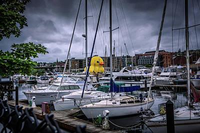 Rubber Ducky Wall Art - Photograph - Rubber Ducky 3 by Jon Berghoff