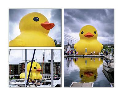 Rubber Ducky Wall Art - Photograph - Rubber Ducky Collage 2 by Jon Berghoff