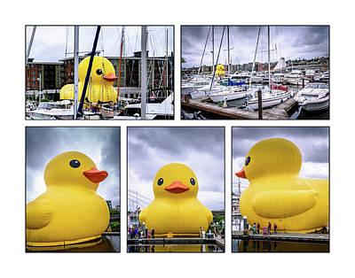 Rubber Ducky Wall Art - Photograph - Rubber Ducky Collage by Jon Berghoff