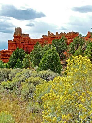 Photograph - Rubber Rabbitbrush In Red Canyon In Dixie National Forest, Utah  by Ruth Hager