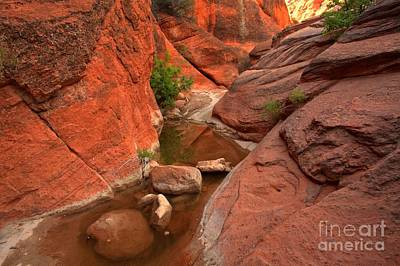 Photograph - Rubble In Red Rock Slots by Adam Jewell