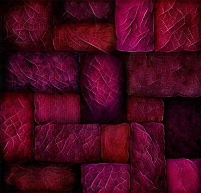 Digital Art - Ruby And Burgundy by Megan Walsh
