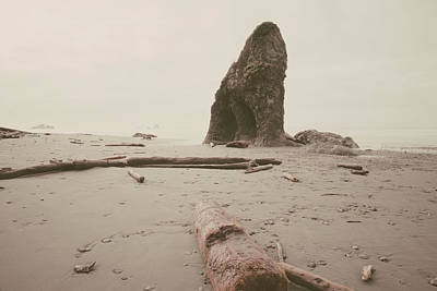 Photograph - Ruby Beach No. 16 by Desmond Manny