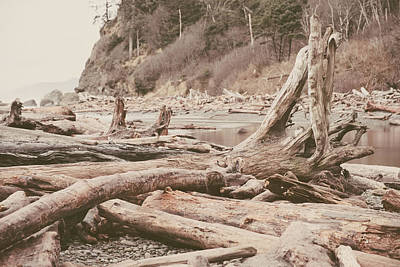 Photograph - Ruby Beach No. 9 by Desmond Manny