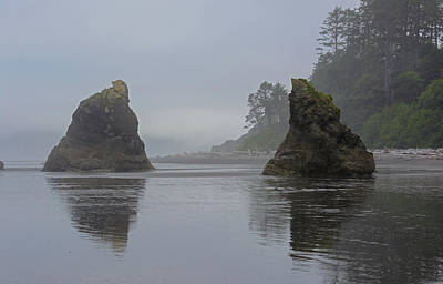 Photograph - Ruby Beach Reflections by Tikvah's Hope