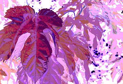 Ruby Leaves Art Print by Richard Coletti