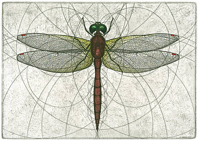 Mixed Media - Ruby Meadowhawk Dragonfly by Charles Harden