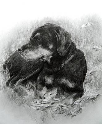 Rottweiler Puppy Drawing - Ruby by Meagan  Visser