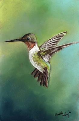 Ruby Throated Hummingbird Art Print by Charlotte Yealey