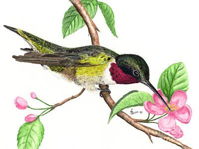 Painting - Ruby-throated Hummingbird by Lynn Quinn