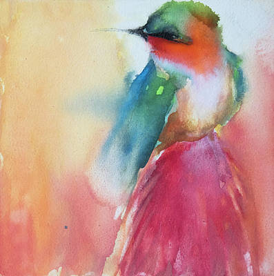 Ruby Throated Hummingbird On A Red Hot Poker Flower Wip Art Print