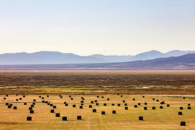 Ruby Valley Bales Art Print by Todd Klassy