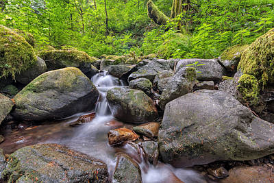 Stream Photograph - Ruckel Creek by David Gn