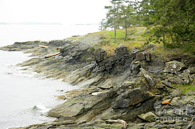 Photograph - Ruckle Shoreline by Frank Townsley