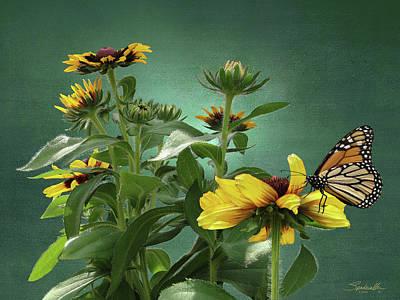 Digital Art - Rudbeckia And Monarch by M Spadecaller
