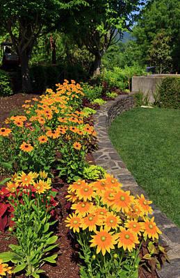 Photograph - Rudbeckia Garden by Jill Lang