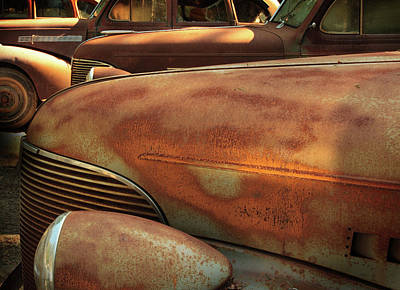 Photograph - Ruddy Rover by Ken Ketchum