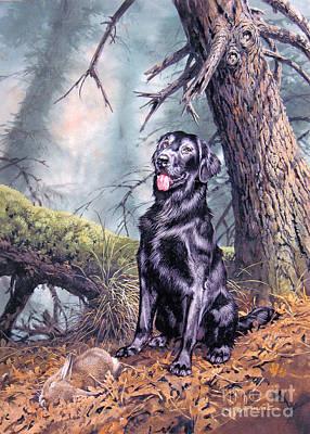 Ruffin Art Print by John Francis