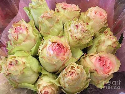Photograph - Ruffled Roses by Jim And Emily Bush