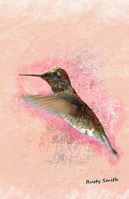 Digital Art - Rufous Hummingbird by Rusty R Smith
