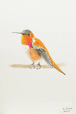 Painting - Rufous Hummingbird by Stefanie Forck
