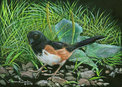 Painting - Rufous-sided Towhee With Ear To The Ground by Susan Donley