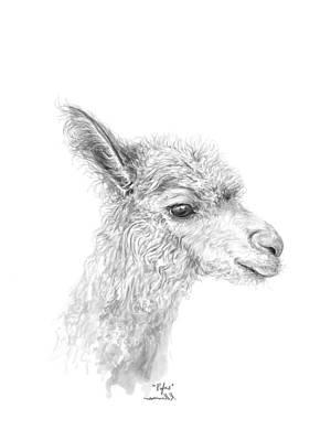 Drawing - Rufus by K Llamas