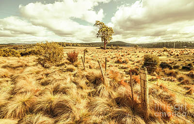 Farmland Wall Art - Photograph - Rugged Australian Pastures by Jorgo Photography - Wall Art Gallery