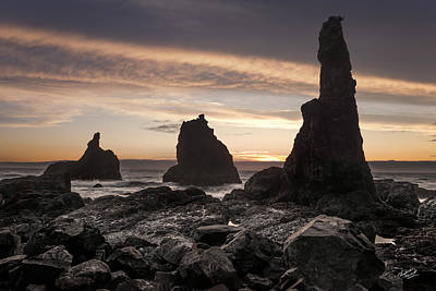 Best Ocean Photograph - Rugged Coastline by Leland D Howard