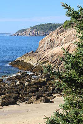 Photograph - Rugged Coastline by Living Color Photography Lorraine Lynch
