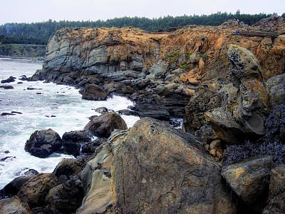 Photograph - Rugged Pacific by Donna Blackhall