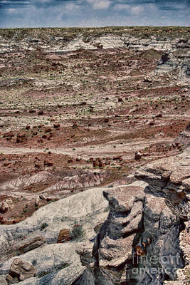 Photograph - Rugged Terrain Of The Southwest by Judy Hall-Folde