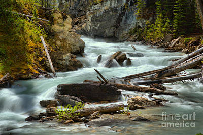 Photograph - Rugged Yoho River by Adam Jewell