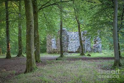 Nirvana - Ruined Library of Hovdala Castle by Antony McAulay