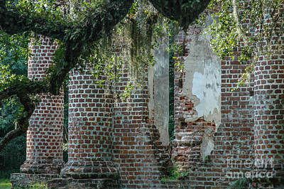 Photograph - Ruins Amongst Majestic Oaks  by Dale Powell