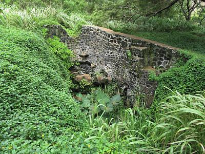 Photograph - Ruins At Hamakua Sugar Cane Landing by Pamela Walton