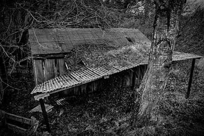 Photograph - Run Down Shed by Alex Leonard
