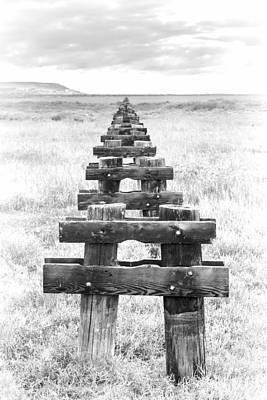 Wetlands Photograph - Run Of Pilings by Joseph Smith