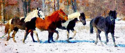 Digital Art - Run Through Winter by Georgiana Romanovna