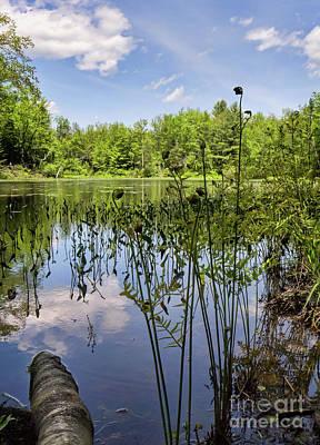 Photograph - Runaround Pond, Durham, Maine  -50573 by John Bald