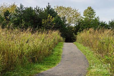 Photograph - Runge Walkway by Jennifer White