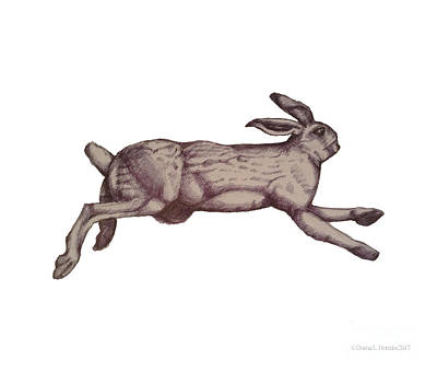 Drawing - Running Bunny Jan 27 by Donna Huntriss