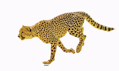 Digital Art - Running Cheetah 2 by Larry Linton
