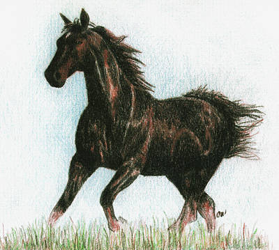 Running Horses Drawing - Running Free by Arline Wagner