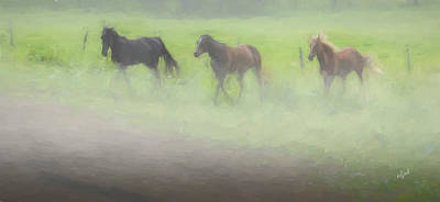 Photograph - Running Horses by Elijah Knight